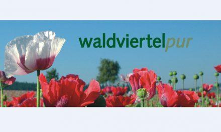 Waldviertel pur am Wiener Rathausplatz von 17. bis 19. Mai